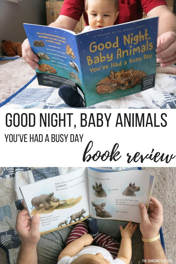 Good Night, Baby Animals, You've Had A Busy Day by Karen B. Winnick | Book Review | Children's Book | Book for Preschoolers | Book for Toddlers | Good night book | Book to teach about animals | Safari animals book | Jungle animals | picture book for child