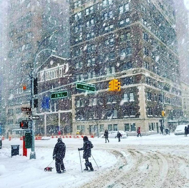 Winter Storm Grayson as seen in Park Avenue by @NeiasNMore by newyorkcityfeelings.com - The Best Photos and Videos of New York City including the Statue of Liberty Brooklyn Bridge Central Park Empire State Building Chrysler Building and other popular New York places and attractions.