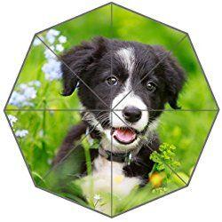 Border Collies Black Puppy Dog Picture Auto Foldable Umbrella