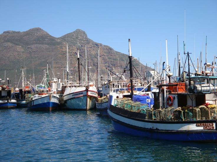 Boats at Hout Bay
