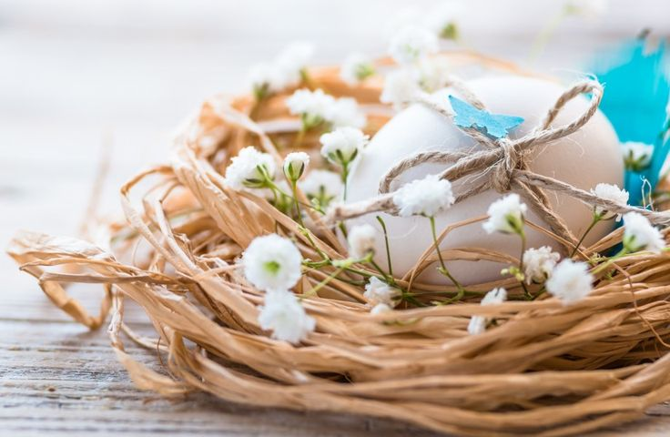 Easter eggs on nest 4K Ultra HD wallpaper | 4k-Wallpaper.Net