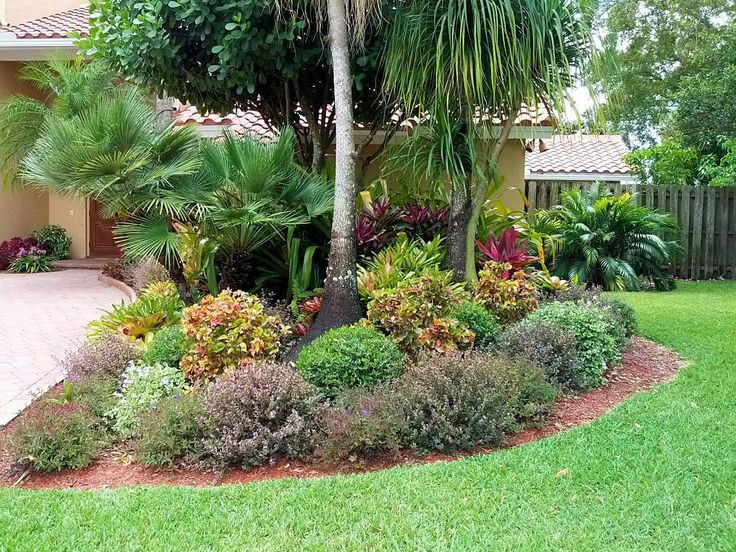 62 best images about south carolina landscape on pinterest for Florida backyard landscaping ideas