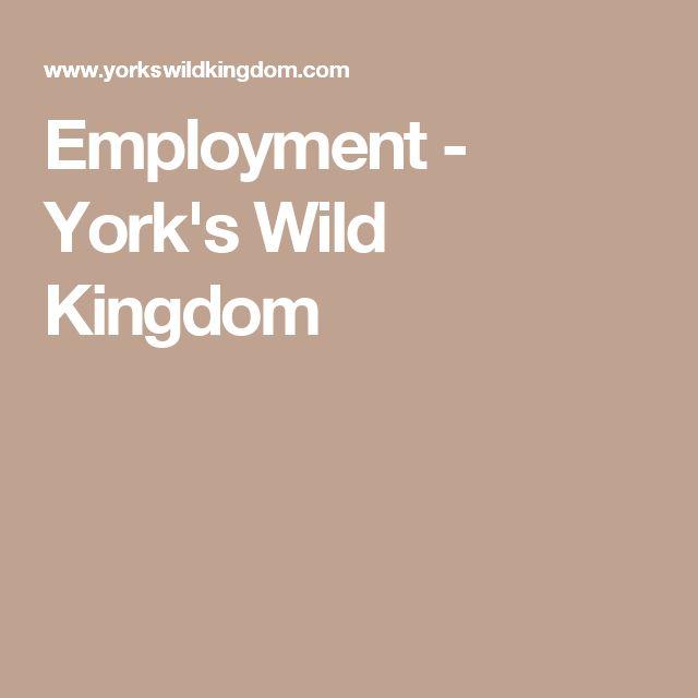 Employment - York's Wild Kingdom