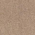 Carpet Sample - Old Ivy II - Color Mushroom (Brown) Texture 8 in. x 8 in.
