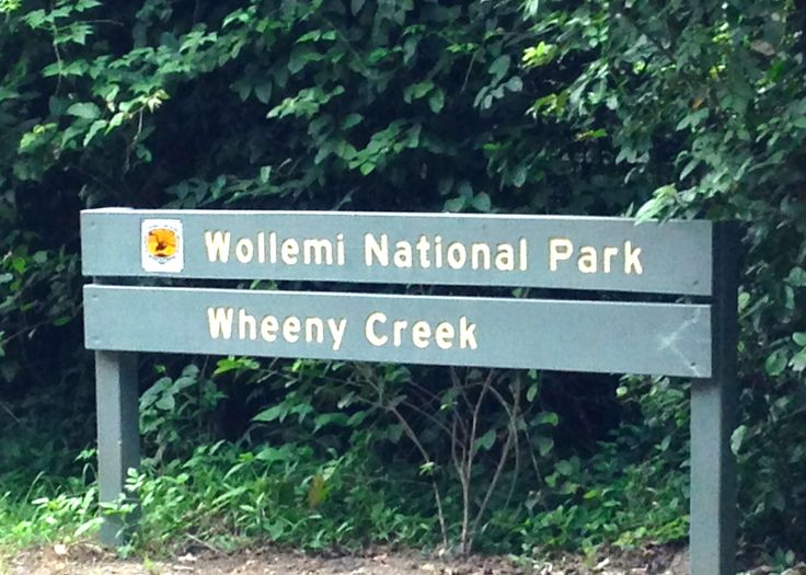 The #CampKingsCrew entering #WollemiNationalPark to #WheenyCreek #campground on our #GTFO #GetTheFamilyOutdoors #adventure