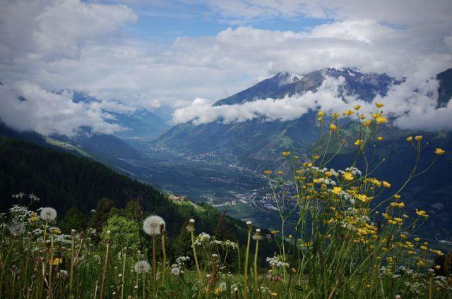 Een beestige boerderijvakantie in Zuid-Tirol.