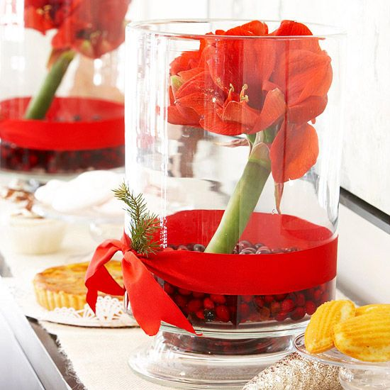 Simple Christmas CenterpiecesCenterpieces Ideas, Decor Ideas, Christmas Centerpieces, Christmas Tables, Simple Centerpieces, Amaryllis And Cranberries, Tables Centerpieces, Christmas Decor, Holiday Tables