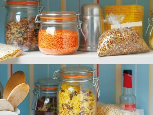 Cute Everything You Need to Know About Pantry Pests