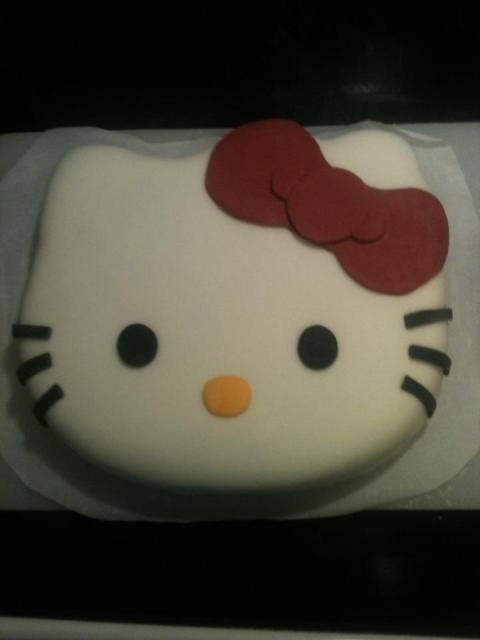The cake I made for Sydneys 6th birthday using a Wilton pan, buttercream, and marshmallow fondant. :)