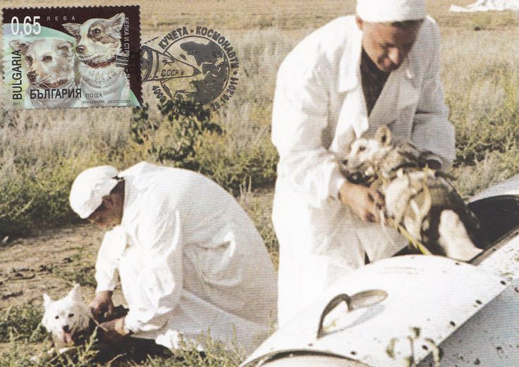 2011 Bulgaria Maxi Card Space Dog Cosmonaut Belka and Strelka Astronauts | eBay
