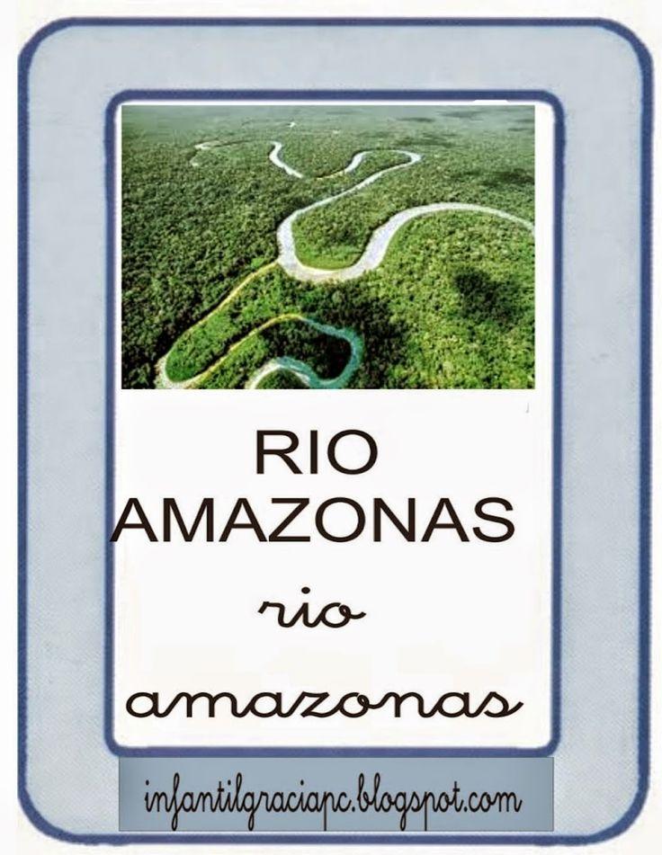 INFANTIL de GRACIA: TARJETAS DE VOCABULARIO DE LA SELVA AMAZONICA