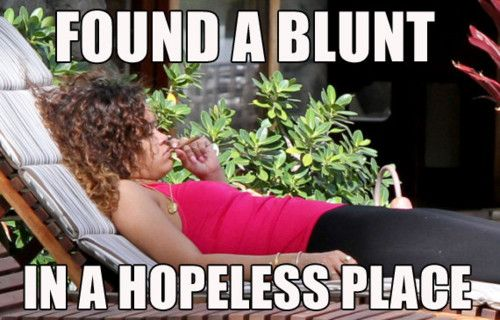 i love when celebrity get caugh smoking weed. the quotes perfect lol