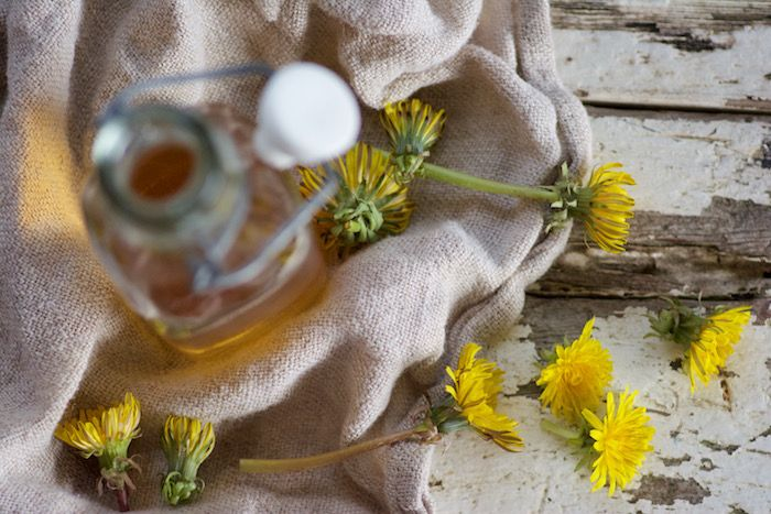 Country Kitchen: DANDELION BITTERS Spring Tonic