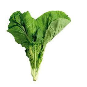 AMSOI is een Surinaamse groente, die best eens een kruising zou kunnen zijn van Chinese kool en andijvie, een soort reuzeraapstelen. Vanuit Afrika is deze mosterdkool in Suriname terechtgekomen.