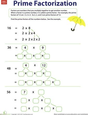Best 25+ Prime factorization ideas on Pinterest | Factors and ...
