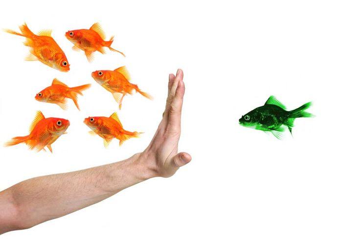 Tips untuk Menghindari Berprasangka