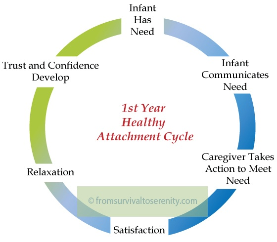 1000+ images about attachment on pinterest | attachment ... attachment cycle diagram labeled water cycle diagram