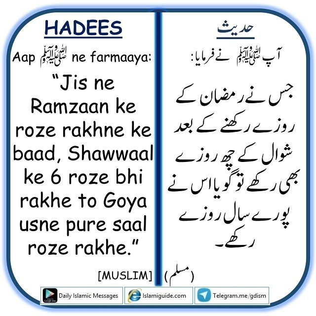 Spread Islam: Shawwaal Ke Rozon Ki Fazeelat
