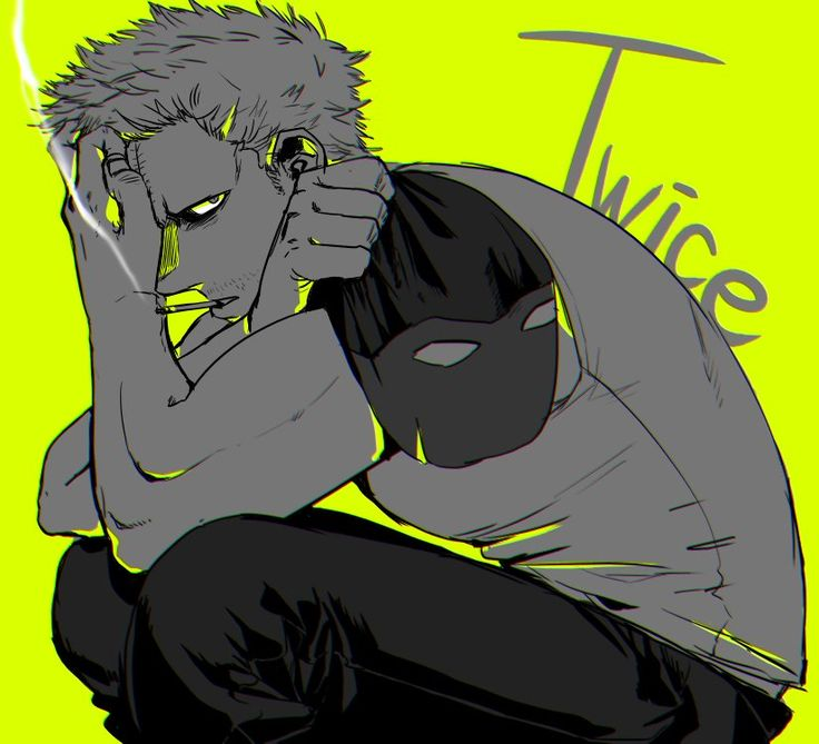 Boku no Hero Academia    Twice