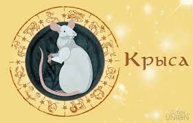 """Журнал """"На волне Успеха"""": Гороскоп на 2017 год для Крысы"""