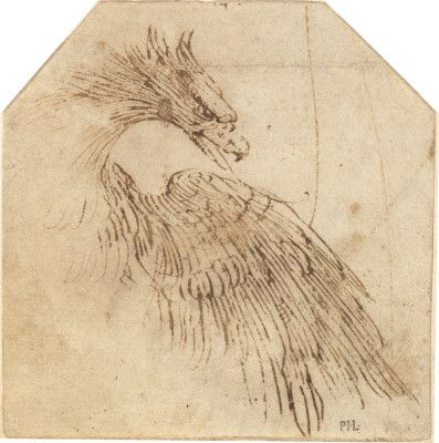 Titian, An Eagle, 1560/65. Pen and brown ink on laid paper. National Gallery of Art, Washington, D.C.