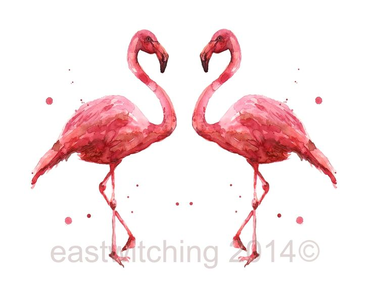 FLAMINGO print, flamingos, Animal Lover Gift, 8x10 print, ready to frame, animal paintings, wildlife art, eastwitching, ready to frame A stylish pair of flamingo prints - to BUY - click here -  www.etsy.com/uk/shop/eastwitching/search?search_query=fla...