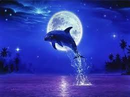 Risultati immagini per immagini di mare con delfini