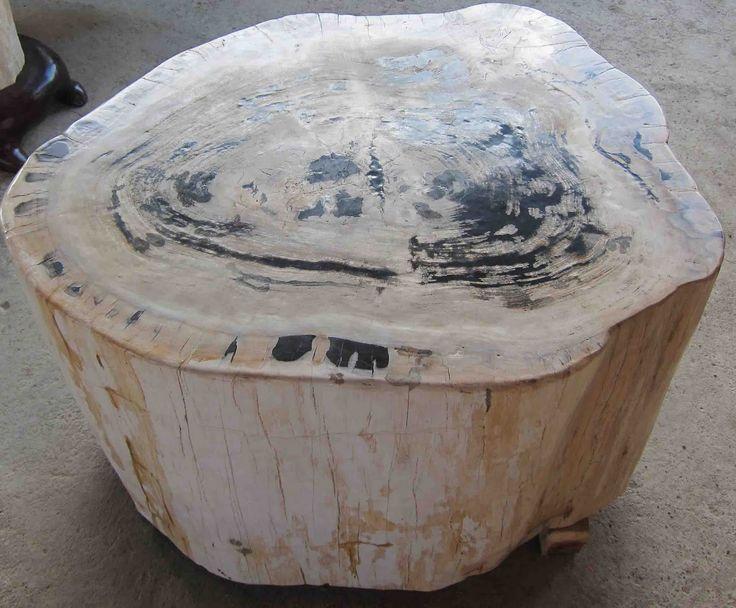 Petrified Wood for sale   IndoGemstone. 432 best IndoGemstone Products images on Pinterest   Petrified