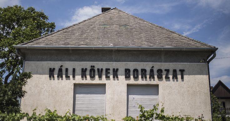 A Káli-medence szívében, Köveskálon található, Szabó Gyula nevével fémjelzett Káli Kövek Borászat ars poeticája a helyi szőlő- és borkultúra régi dicsfényét...