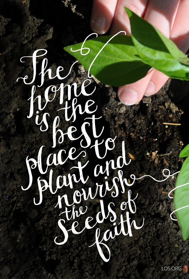 The home is the best place to plant and nourish the seeds ...