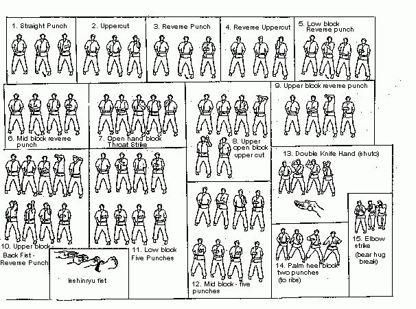 Shorin Ryu Kata Diagrams | 15 Basic Isshinryu Hand Techniques (Te Waza)
