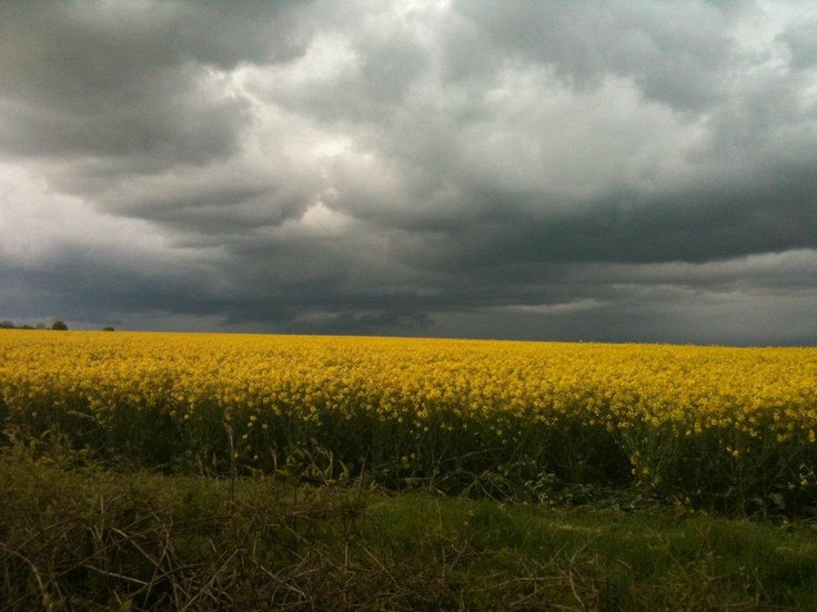 Dark Skies... Oakley, Hampshire. Photo by Nigel Smith