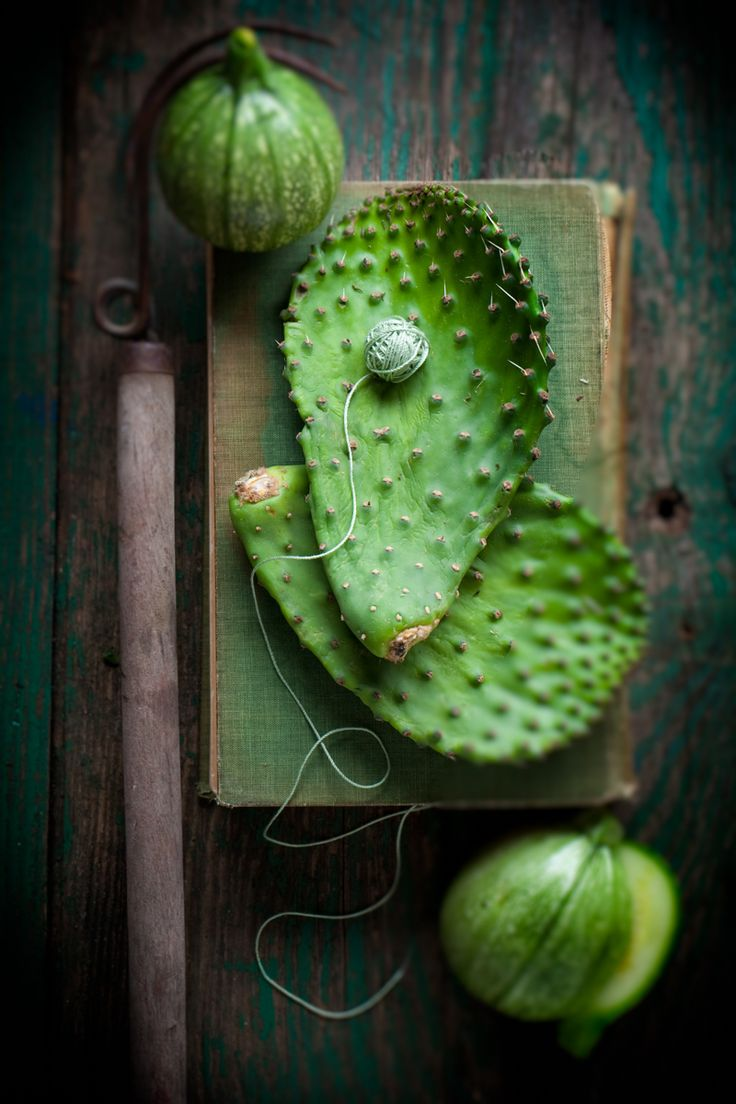 Cactus leaves with round zucchinis on green book with green rustic wooden surface www.rkjacobs.com Top Food Photographer New York Seattle Portland Robert Jacobs Photography ©2013 | STILL LIFE