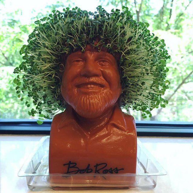 Bob Ross Chia Pet Bob Ross Cute Bob Haircuts Blunt Bob Hairstyles