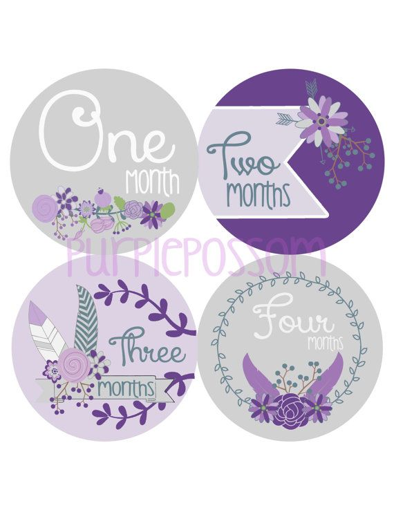 ON SALE Monthly Baby Milestone Stickers Baby Girl by PurplePossom