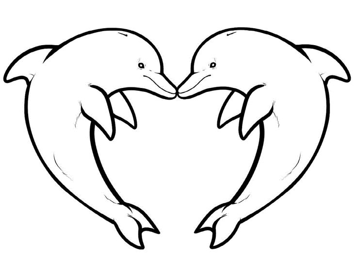 dolphins interesting and funny coloring pages for kids printable dolphins coloring pages for kids