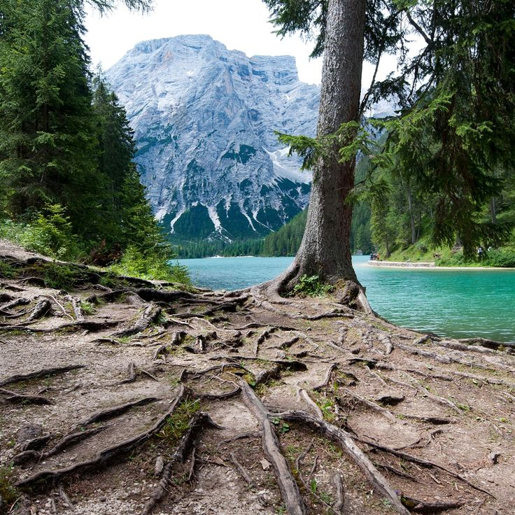 Lago di Braies  #iPad #Air #Wallpaper | http://www.ilikewallpaper.net/ipad-air-wallpaper/,many kinds of retina wallpapers is available for you.