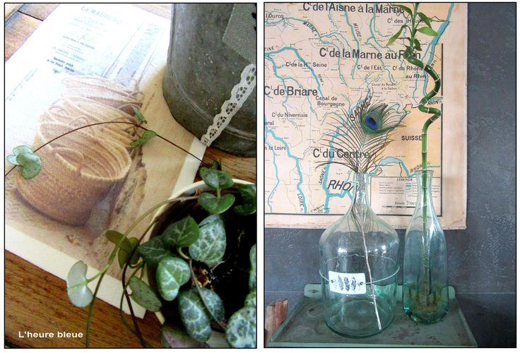 IDEE : une plume de paon dans une bouteille ancienne... achetée chez cette adorable fleuriste dans sa vieille camionnette gare de Vannes... Isaela