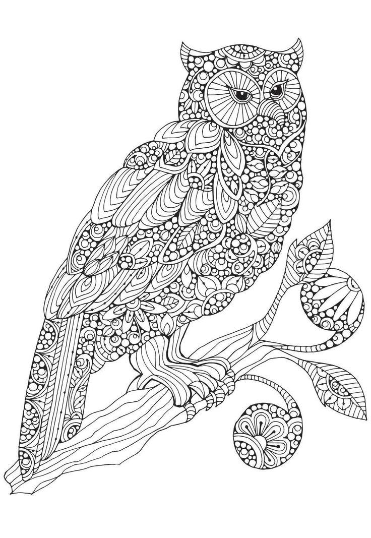 821 best owls black n white images on pinterest - Animal Mandala Coloring Pages Owl