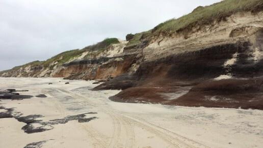 Shark Bay, Iluka N.S.W