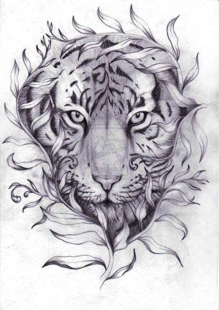 11 best woman and tiger tattoo drawings images on for Tattoo sketches for men