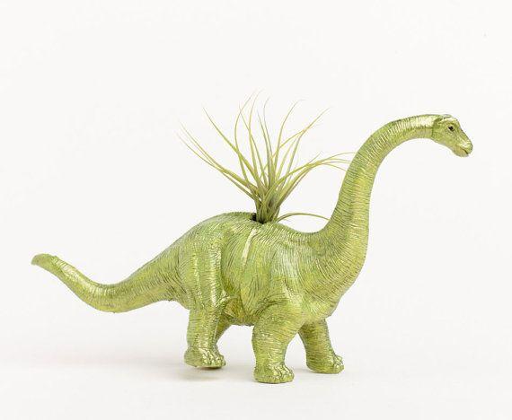 Dinosaur Air Plant planter from Boy-Girl Tees on Etsy