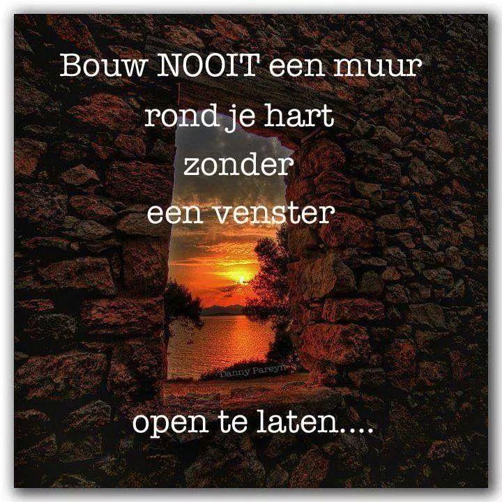 Bouw nooit een muur rond je hart zonder een venster open te laten