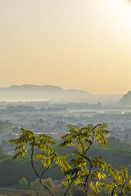 Palermo am frühen Morgen - eine gute Zeit, um die brodelnde Stadt im Sommer zu besuchen -mit diesen Tipps: http://www.trip-tipp.com/sizilien/ausfluege-stadt/palermo.htm #sicily #sicilia #italien #italy #italia