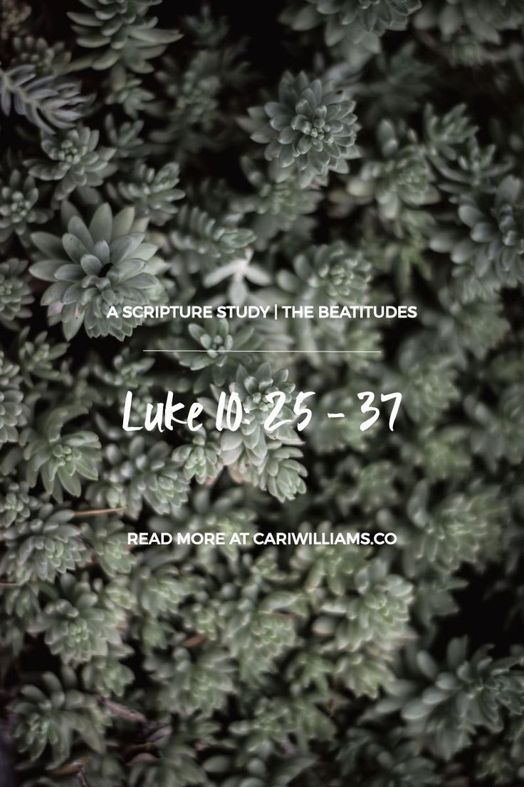 Beatitudes Study Day 15: Luke 10: 25 – 37