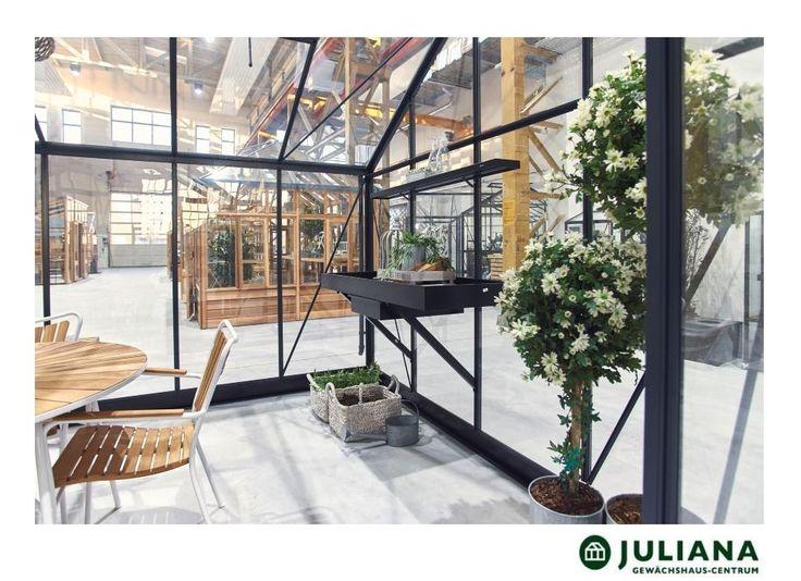 die besten 25 juliana gew chshaus ideen auf pinterest. Black Bedroom Furniture Sets. Home Design Ideas