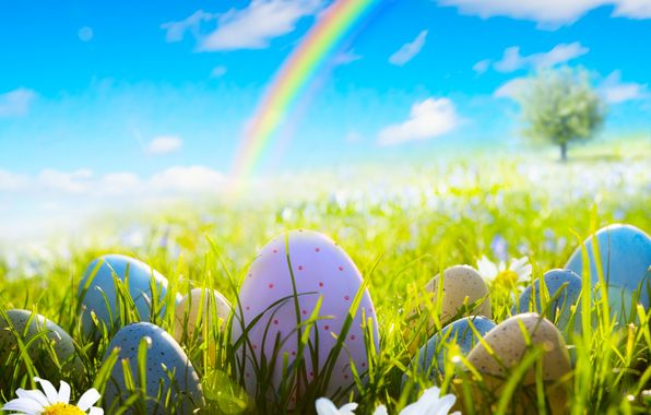 Wallpaper easter, spring, sunshine, meadow, grass, flowers, eggs, camomile