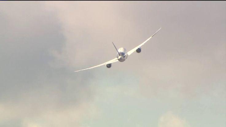 Congressman Joseph Crowley questions FAA after latest birdstrike at JFK | PIX11