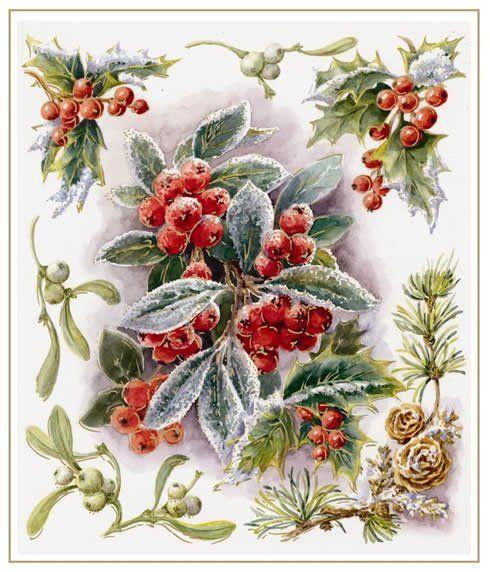 Vintage Flowers Flowers Vintages Cards Flowers