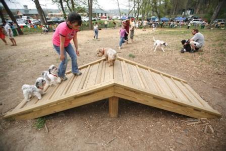 dog playground ideas